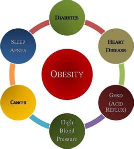 African American Childhood Obesity The Skinny On Fat Penny Dickerson