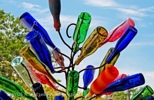 bottle-tree-001a